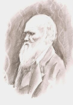 Darwin by t-parr