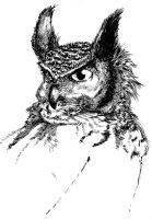 Horned Owl by jiggly