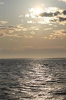 Grand Haven State Park Beach 10 by jessijoke
