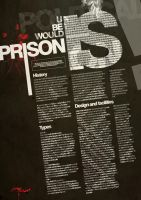 prison article by sounddecor