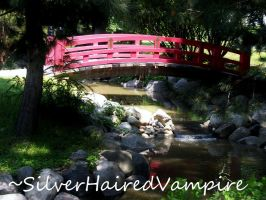 The Red Bridge by SilverHairedVampire