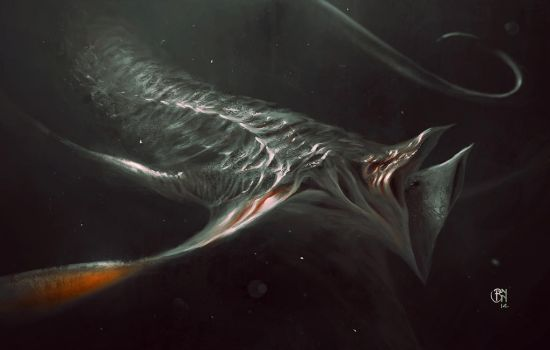 sea bat by BennyKusnoto
