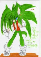 :Manic the hedgehog by YamiYumi