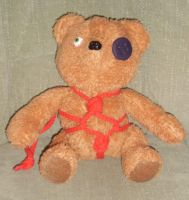 Metos Teddy Bear by Cezlan