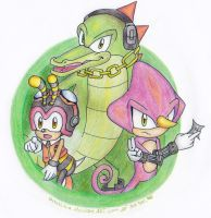 Team Chaotix :: Contest Entry by Amalika