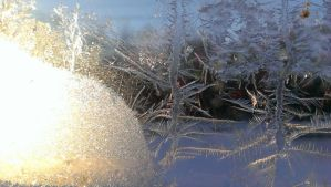 Light Frost by bec-A16