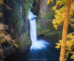 Toketee Falls by melmaya