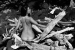 driftwood monochrome by andre-j