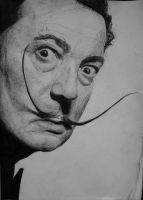 Salvador Dali by belfast1911