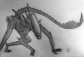 Xenomorph by Betelgeuse7