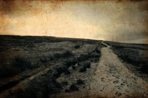 the road less travelled by RickHaigh