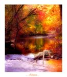 Automne by Flore-stock