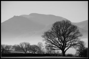 The Lake District - XVIII by jerry486