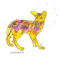 tie dyed fractal hairless cat by HiddenStash