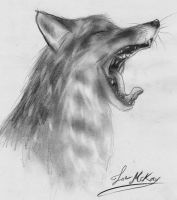 Fox Yawning Sketch by ScottishRedWolf