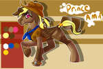:Ref: Prince Amir by HighNoonAce