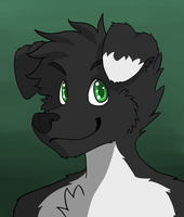 Blaine the Border-Collie by afoxen