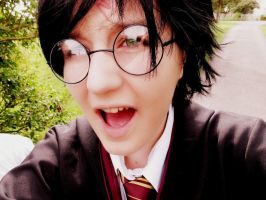 Harry Potter Cosplay 35 - final by KatintheAttic