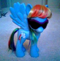 Custom Rainbow Dash by AJ-Shep