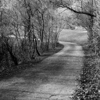 Road of Misery by AbdoHad