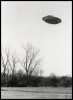 The UFO by Nashoba-Hostina