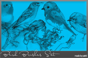 Bird Brushes by Blowthat