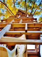 Our Treehouse Built by My Husband {Photo 17} by Empress-XZarrethTKon