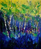 Birchtrees56 by pledent