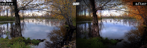 Lake Manipulation: before and after by afiqreza7