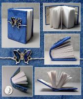 Butterfly Book by funkmaster-c