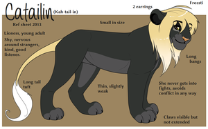 Catailin Ref 2013 by Lluma