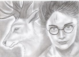 Harry potter partonus by Ruth-Tay