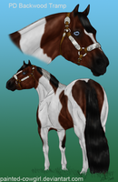 Holly's Full Bro- PD Backwood Tramp by painted-cowgirl
