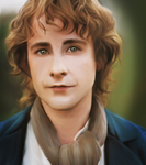 Peregrin Took by LittleTurtleDuck