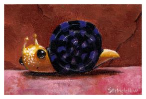 Mr Snail by csgirl