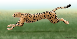International African Cheetah Day by MikhailoMMX