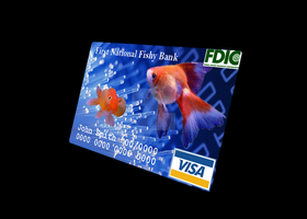 School Project - Debit/Credit Card by Sushiopolis