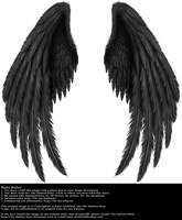 Winged Fantasy V.2 - Black by Thy-Darkest-Hour
