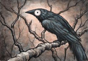 Black Bird Watercolour V by shmeeden