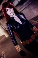 Black Widow by PIPPA-512