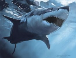 great white shark by art-of-bart
