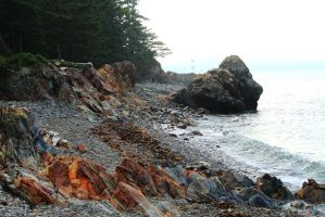 Rocky Coast of Maine by Celem