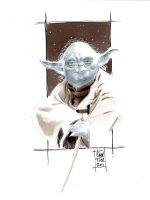 Master Yoda commission by idirt