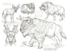 Furry Ungulates by MIKECORRIERO