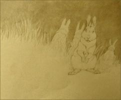 rabbits by luve