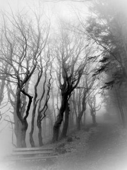 mystical by 0Emptiness0