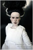 The Bride Of Frankenstein 5 by kamarza