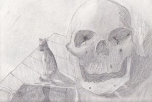The Skull, The Cat and The iPhone by ColinGhastslayer