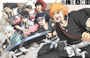 Bleach: The Bout of Five Companies by Kanokawa