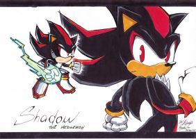 Shadow the Hedgehog -battle style- by KnightNicole